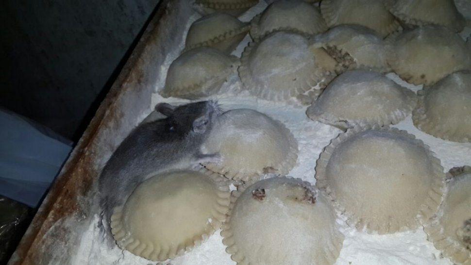 """Dueña del local que vendía """"rataempanadas"""" fue absuelta ¡Miedo!"""